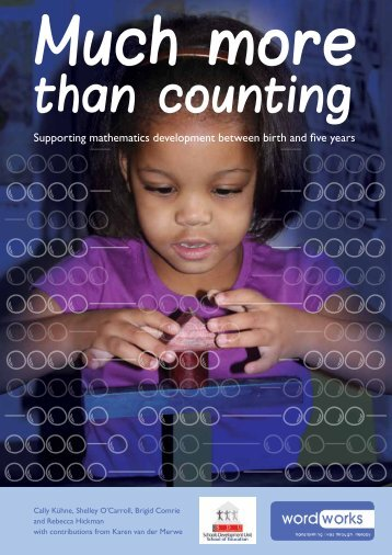 Much More than Counting - SDU - University of Cape Town