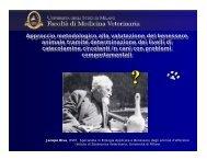 Approccio metodologico alla valutazione del benessere animale ...