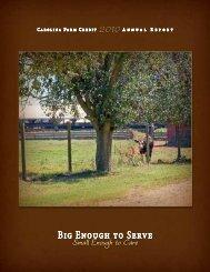 2010 Report - Carolina Farm Credit