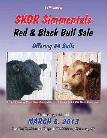 SKOR Simmental Bull Sale - Transcon Livestock Corporation
