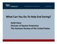 What Can You Do To Help End Soring? - Sound Horse Conference