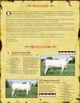 bred heifers - Charolais Banner - Page 3