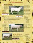 bred heifers - Charolais Banner - Page 4