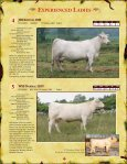 bred heifers - Charolais Banner - Page 5