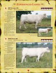 bred heifers - Charolais Banner - Page 7