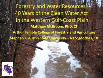 Dr. Matthew McBroom, Assistant Professor of Hydrology, Stephen F ...