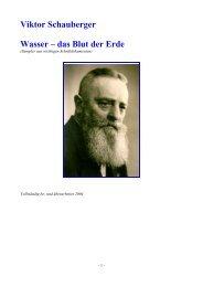 Viktor Schauberger Wasser – das Blut der Erde - blattmann