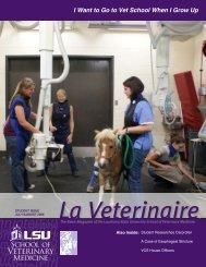 I Want to Go to Vet School When - School of Veterinary Medicine ...