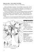 Noen nyheter våren 2000 - Den norske Rhododendronforening - Page 6