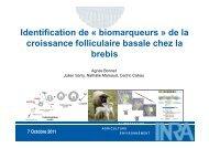 Identification de « biomarqueurs » de la i f lli l i b l h l ... - GeT