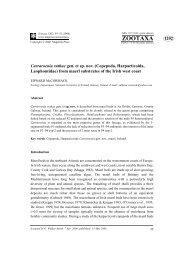 Zootaxa, Carraroenia ruthae gen. et sp. nov ... - Luciopesce.net