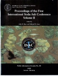 Proceedings of the First International Soda Ash Conference Volume II