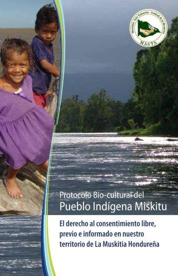 Pueblo Indígena Miskitu - Natural Justice