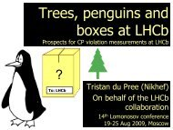 Prospects for CP Violation Studies at LHCb