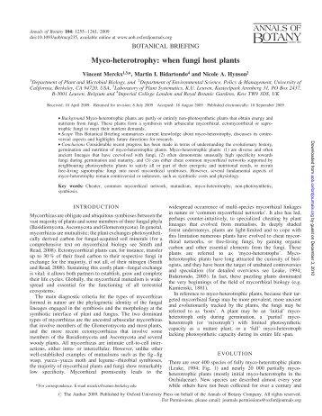 Myco-heterotrophy: when fungi host plants