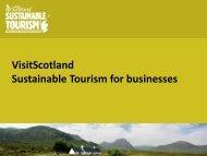 Download Sustainability Strategies Presentation