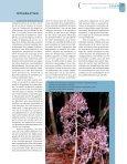 Calédonie - Bois et forêts des tropiques - Cirad - Page 3