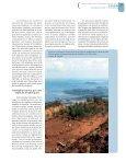 Calédonie - Bois et forêts des tropiques - Cirad - Page 7