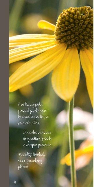 Práctica ayuda para el jardín que le hará las delicias durante años ...
