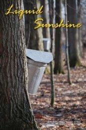 Liquid Sunshine – Maple Sugaring at PPL Montour Preserve
