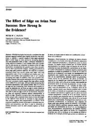 The Effect of Edge on Avian Nest Success: How Strong Is the ...