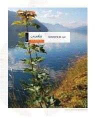 Årsberetning 2006.pdf
