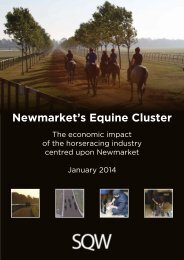 the economic impact of the horseracing industry centred upon newmarket