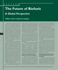 The Future of Biofuels: A Global Perspective. Feature, Amber Waves ...