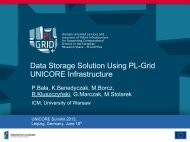 Data Storage Solution Using PL-Grid UNICORE Infrastructure