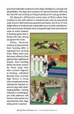 Illustrated Standard - the Basenji Club of America - Page 4