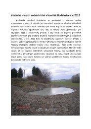 (Výstavba malých vodních tůní 2012) - Hodslavice