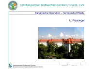 Interdisziplinäres Stoffwechsel-Centrum, Charité, CVK