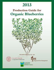 Organic Blueberries - New York State Integrated Pest Management ...