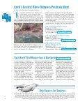 Kings Bay Rule Gets Overwhelming Support - Save the Manatee Club - Page 4