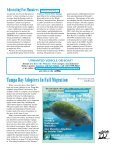 Kings Bay Rule Gets Overwhelming Support - Save the Manatee Club - Page 7