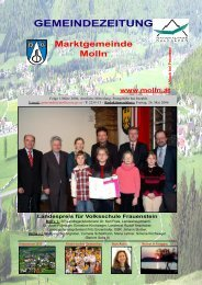Ausgabe 1/März 2006 - Molln