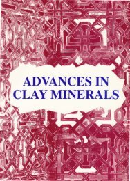 ADVANCES IN . · CLAY MINERALS - Sociedad Española de Arcillas