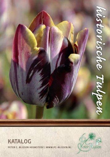 Enkele Vroege Tulpen (vervolg) (Forsetzung) - Peter C. Nijssen