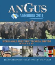 Argentina, a vast country in the southern tip of the Americas