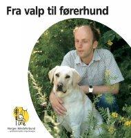 Fra valp til førerhund - Norges Blindeforbund