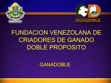 fundacion venezolana de criadores de ganado doble ... - gadema.org