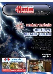 Temmuz 2008 - Ostim Organize Sanayi Gazetesi