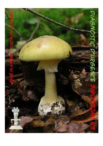Extrait Diagnostic d'urgence en Mycologie - Giftpilze.ch