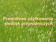 Prawidłowe użytkowanie siedlisk przyrodniczych - Baltic Green Belt