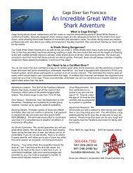 Great White Shark Adventure: San Francisco CA - Incredible ...