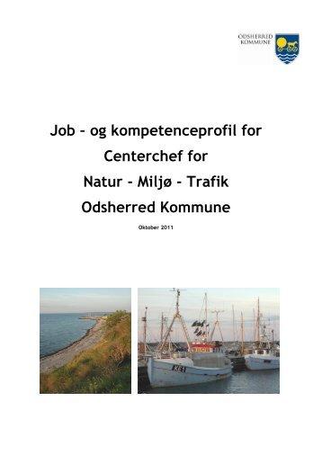 Job – og kompetenceprofil for Centerchef for Natur - Miljø ... - KTC