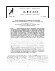 el pitirre - Society for the Conservation and Study of Caribbean Birds