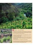 Kueferwegpresse 62 - Weinhandlung am Küferweg AG - Seite 3