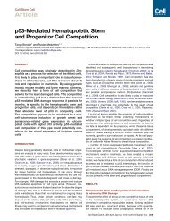 p53-Mediated Hematopoietic Stem and Progenitor Cell Competition