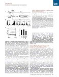 p53-Mediated Hematopoietic Stem and Progenitor Cell Competition - Page 3